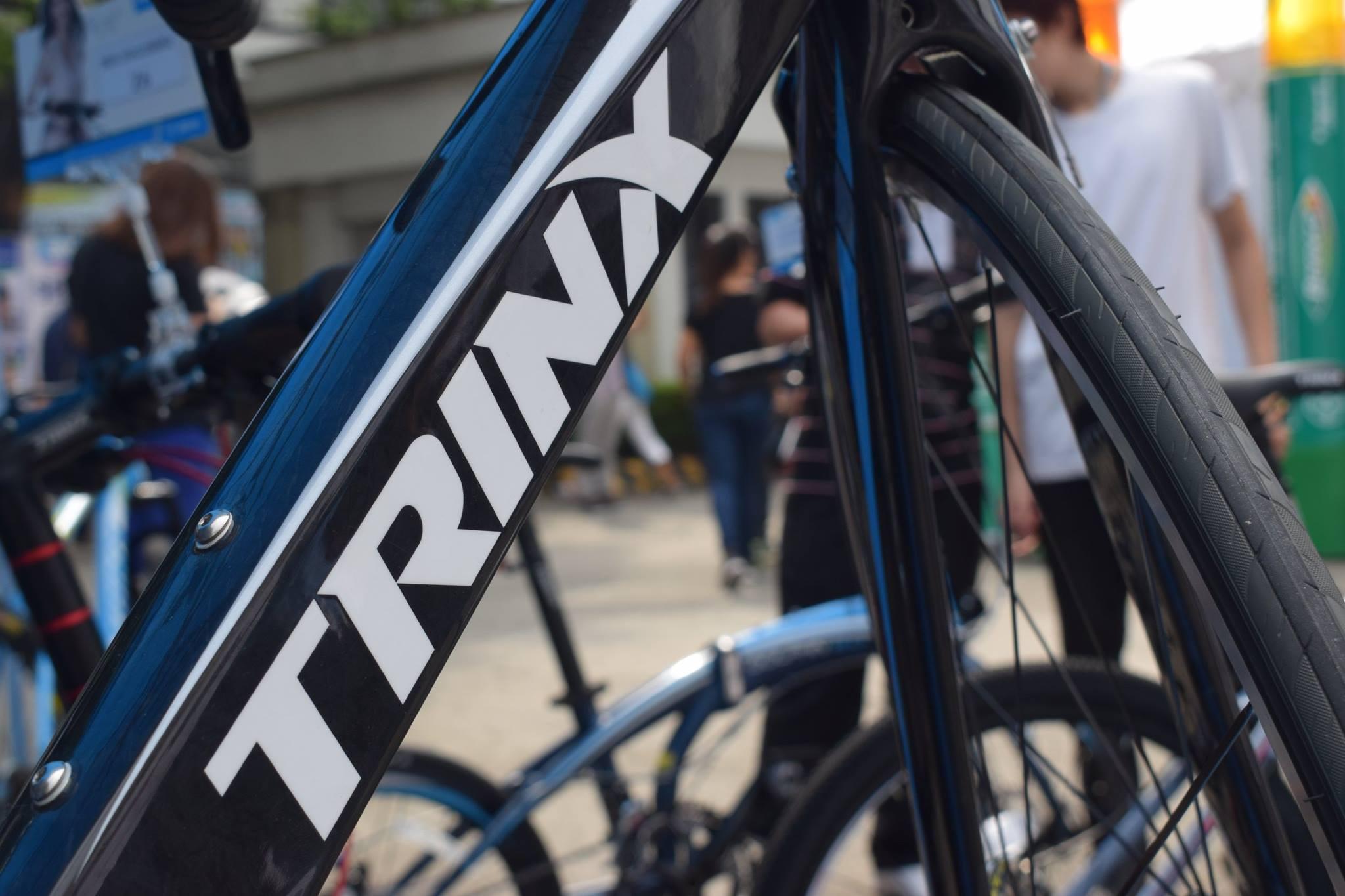 Trinx 25